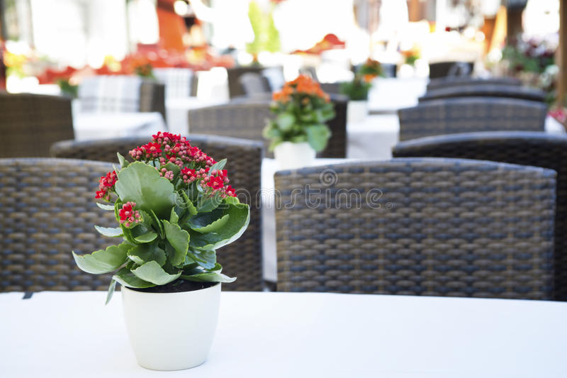 Nicht geöffnetes Café morgens in der alten europäischen Stadt lizenzfreies stockbild