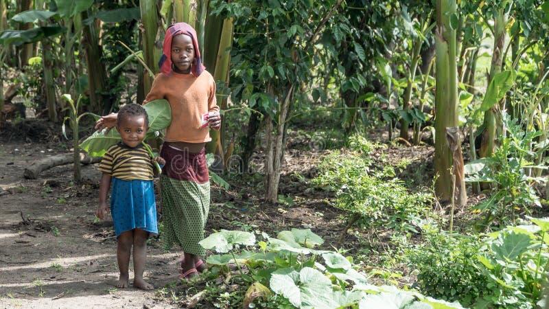 Nicht identifizierte äthiopische Mädchen, die in ihr Dorf gehen lizenzfreies stockbild