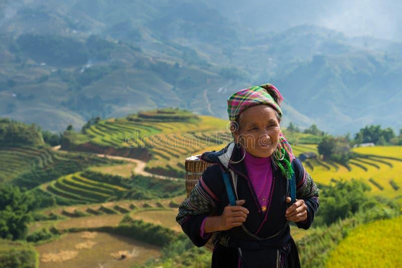 Nicht identifizierte alte Hmong-Frau mit Reisfeld-Terrassenhintergrund lizenzfreie stockfotos
