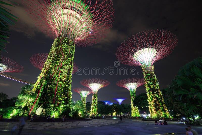 Nicht identifizierter Tourist besuchte Licht von Gärten durch die Bucht an nah stockbild