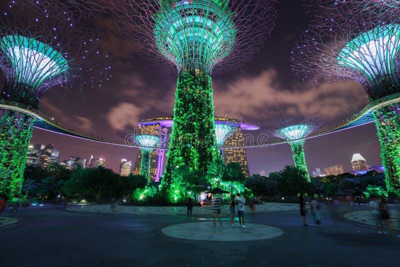 Nicht identifizierter Tourist besuchte Licht von Gärten durch die Bucht an nah lizenzfreie stockbilder