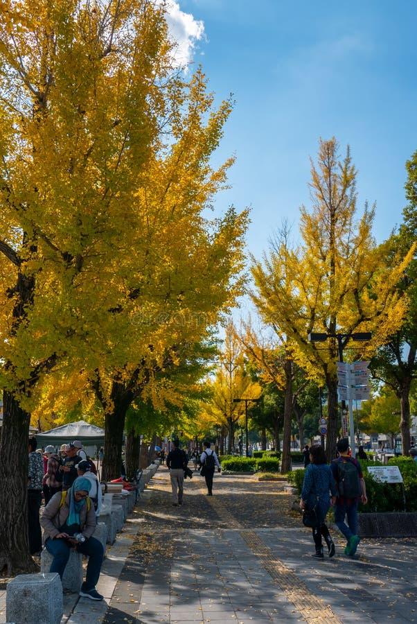 Nicht identifiziertes peple genießen Herbstsaison am Himeji-Schlosskomplex in Himeji, Hyogo-Präfektur, Japan stockbild