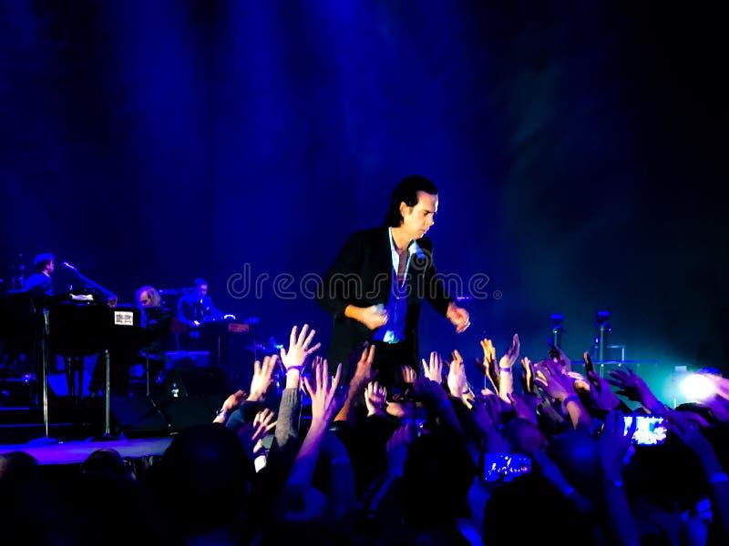 Nick Cave & de Slechte Zaden in Overleg in Wenen royalty-vrije stock foto's