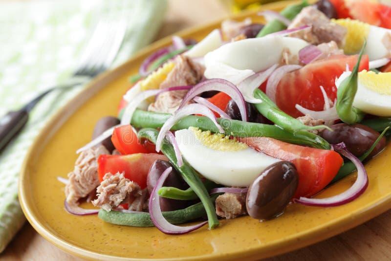 Download Nicoise salad stock image. Image of nobody, tuna, onion - 22064979