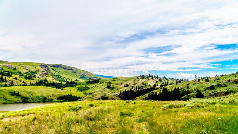 Nicola谷的草土地,不列颠哥伦比亚省,加拿大 库存照片