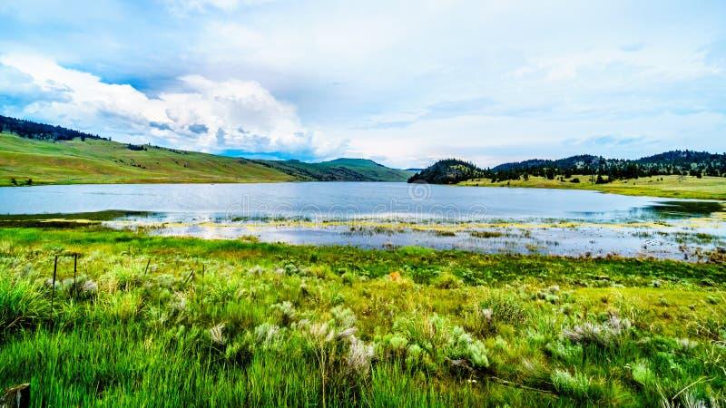 Nicola谷的Stump湖在BC加拿大 免版税图库摄影