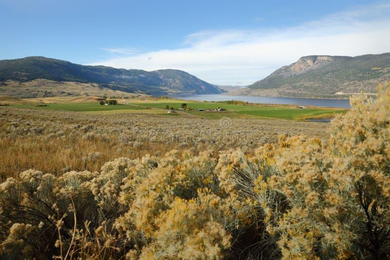 Nicola Lake und Tal, Britisch-Columbia lizenzfreies stockbild