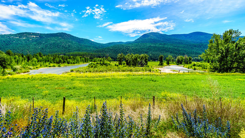 The Nicola River flows through the Lower Nicola Valley near Merritt. On its way to the Fraser River at Spences Bridge in British Columbia, Canada stock photos