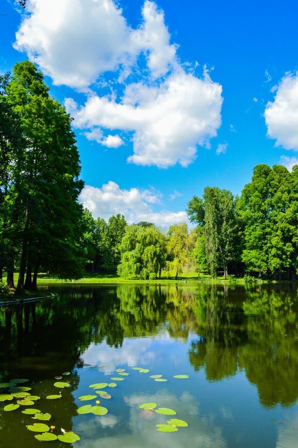 Nicolae Romanescu park obraz stock