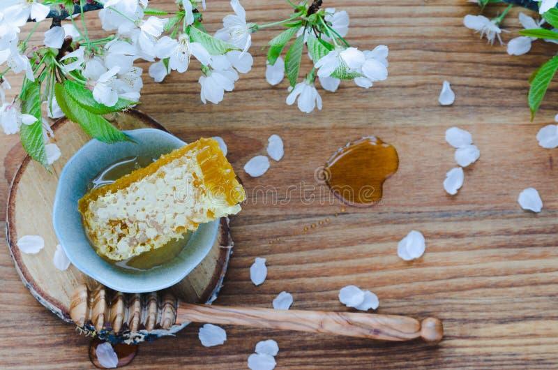 Nid d'abeilles dans le plongeur en céramique de cuvette et de miel sur le fond en bois avec des fleurs de cerisier images libres de droits