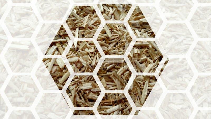 Nid d'abeilles de chanvre illustration stock