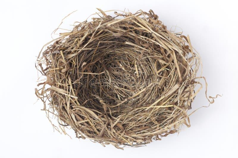 nid d'oiseau images stock