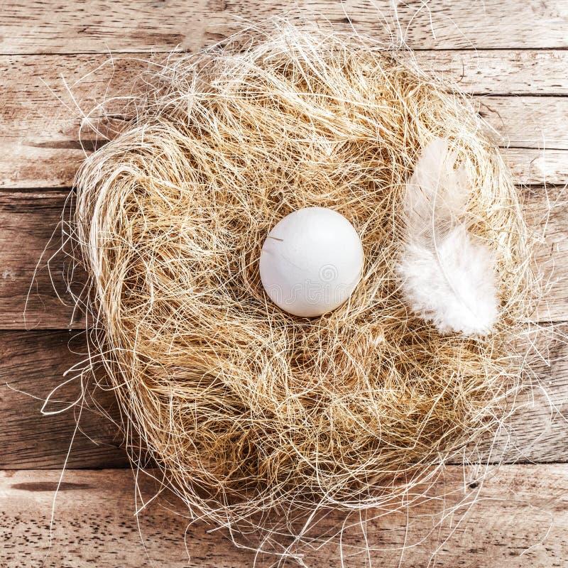 Nid de Pâques avec l'oeuf blanc et plume sur le fond en bois avec photos libres de droits