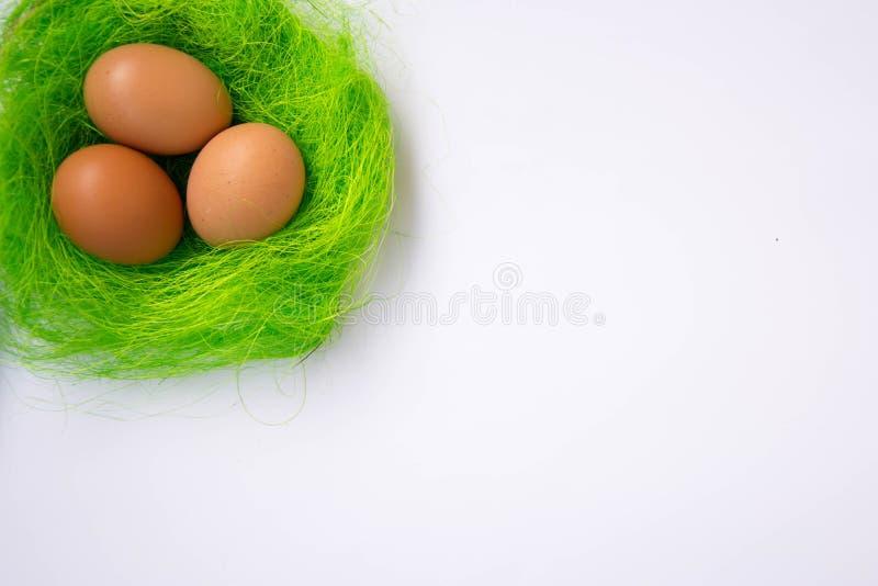 Nid vert avec la décoration de trois oeufs de pâques - concept de Pâques, vue supérieure de tradition de vacances, en gros plan a photographie stock