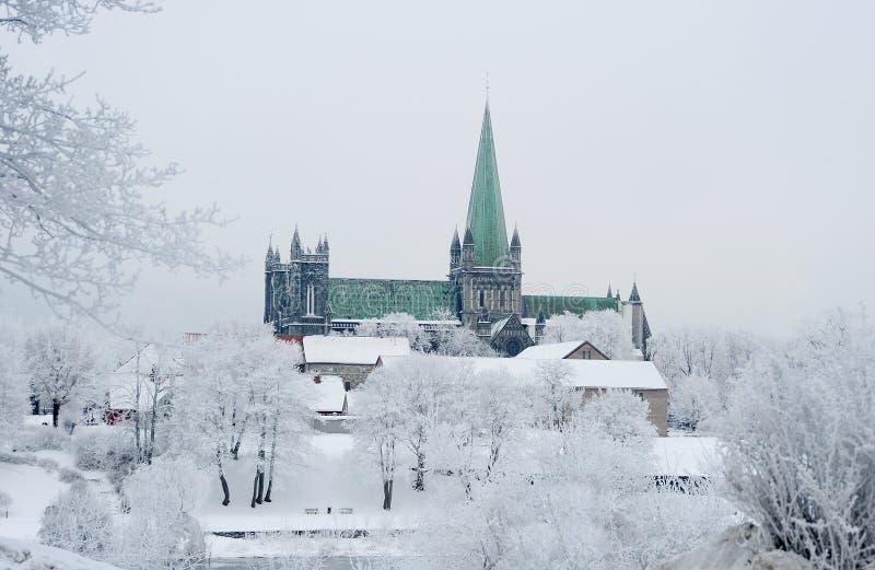 Nidaros大教堂 库存图片