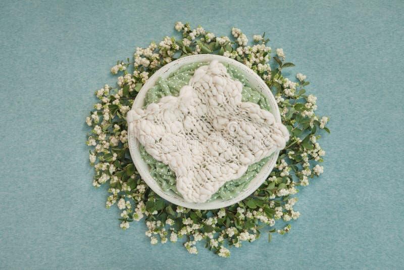 Nido con tappeto bianco per i tiri di foto neonati, decorato con i ramoscelli con le bacche bianche immagine stock
