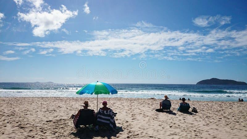 Nido dei falchi di vista della spiaggia @ immagini stock libere da diritti