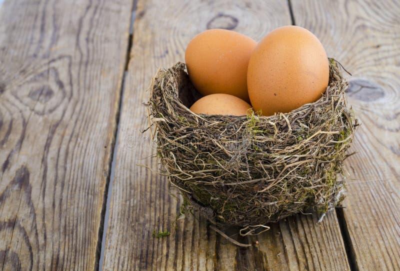 Nido dell'uccello con le grandi uova fotografia stock libera da diritti