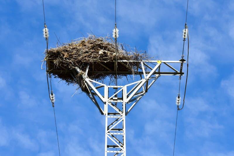 nido dell'uccello fatto con i rami degli alberi alla cima di una torre elettrica di alta tensione che conduce l'elettricità alle  immagini stock