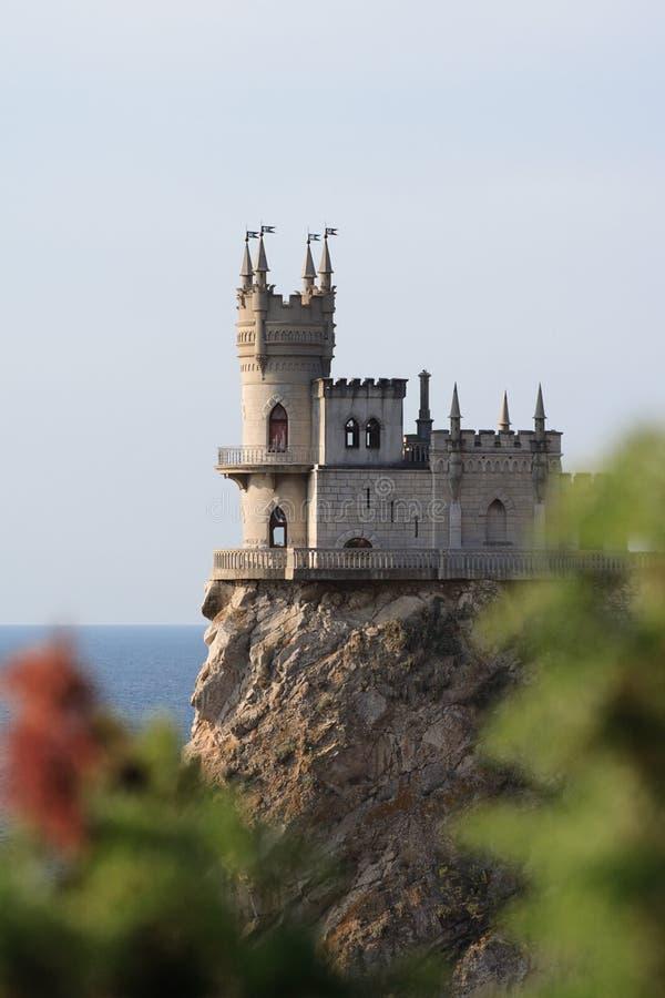 Nido dello Swallow del castello immagini stock
