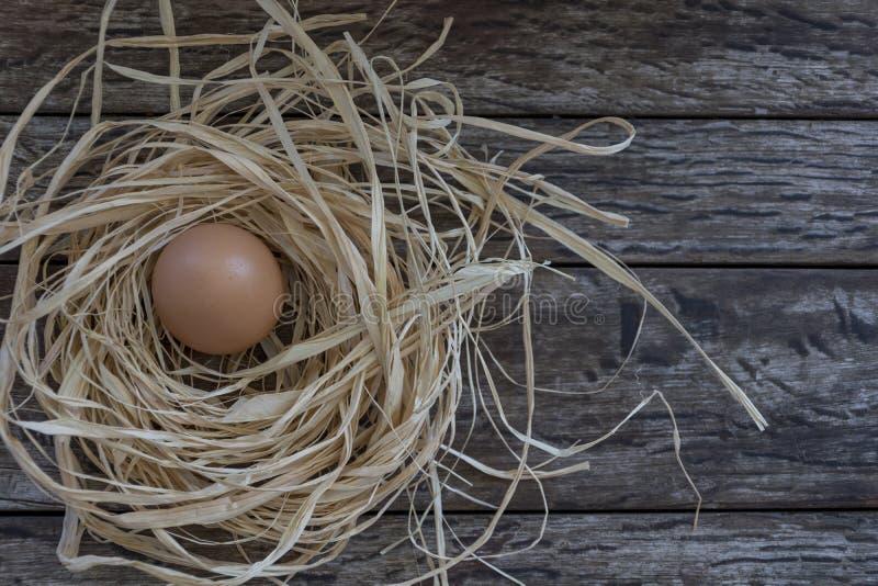 Nido ed uovo su un fondo di legno Decorazione di Pasqua fotografia stock libera da diritti