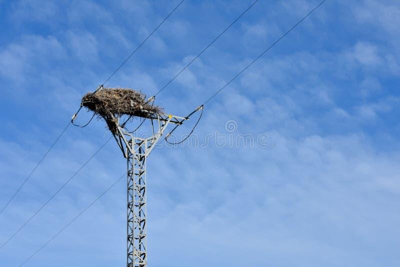 nido vuoto dell'uccello fatto con i rami degli alberi alla cima di una torre elettrica di alta tensione che conduce l'elettricità fotografia stock libera da diritti