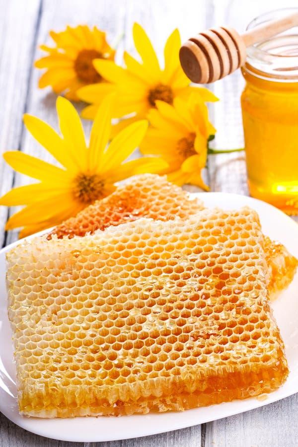Nids d'abeilles photos libres de droits