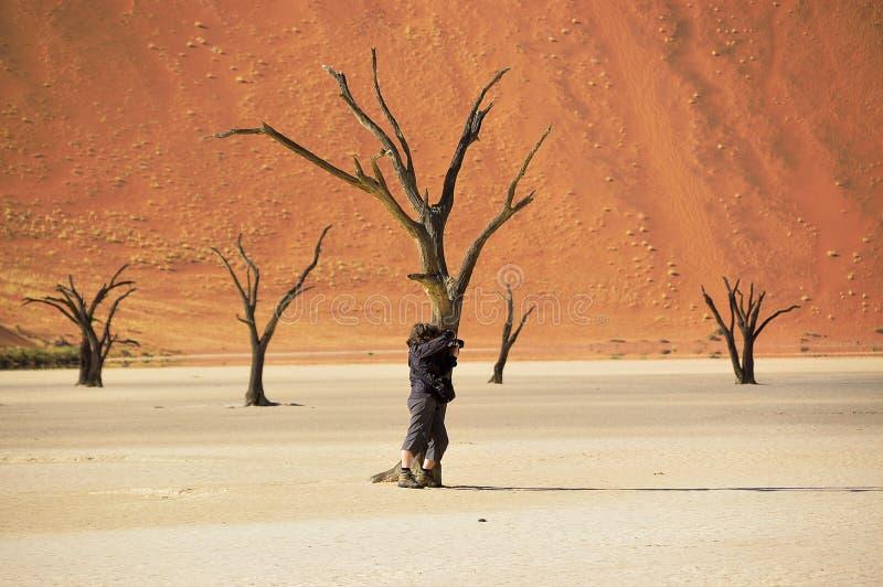 Nieżywa Vlei pustynia, Namibia, Południowa Afryka fotografia royalty free