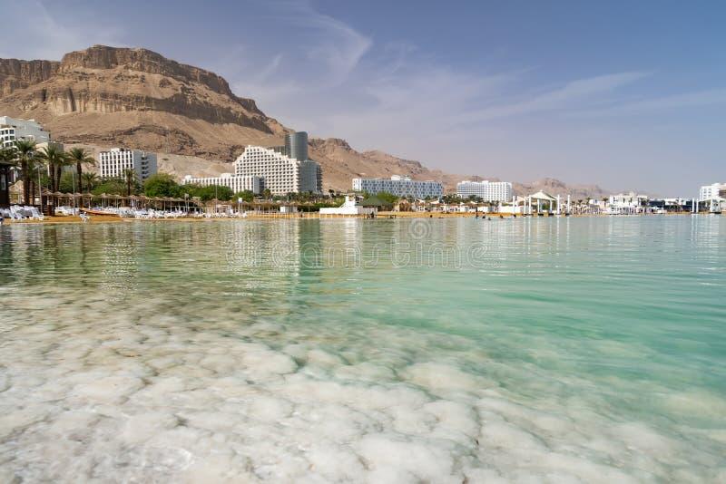 Nieżywego morza soli brzeg Ein Bokek, Izrael zdjęcia stock