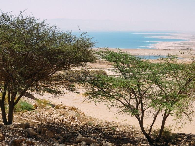Nieżywego morza widok od Ein Gedi obrazy royalty free