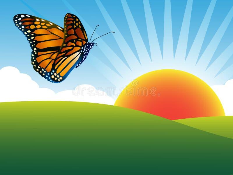 nieba motyli lato ilustracji