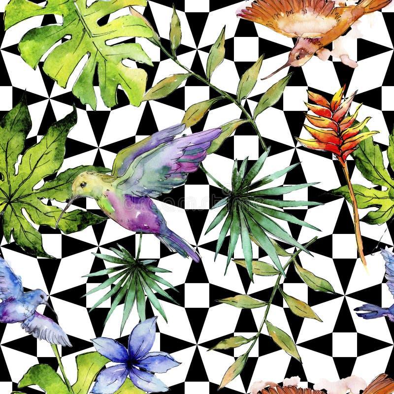 Nieba ptasi kolorowy colibri w przyrodzie akwarela stylem Bezszwowy tło wzór ilustracja wektor