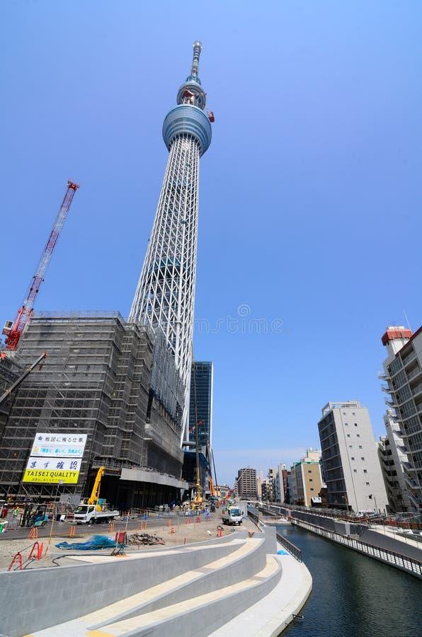 nieba Tokyo drzewo fotografia royalty free