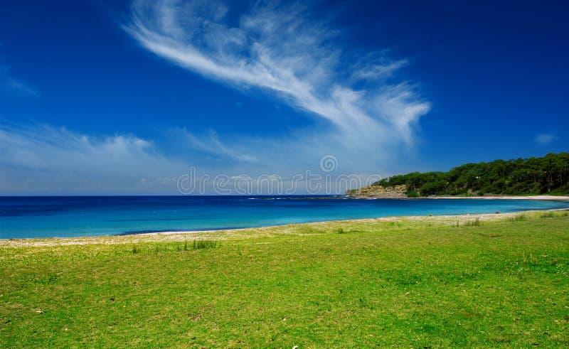 niebieska green zdjęcia royalty free