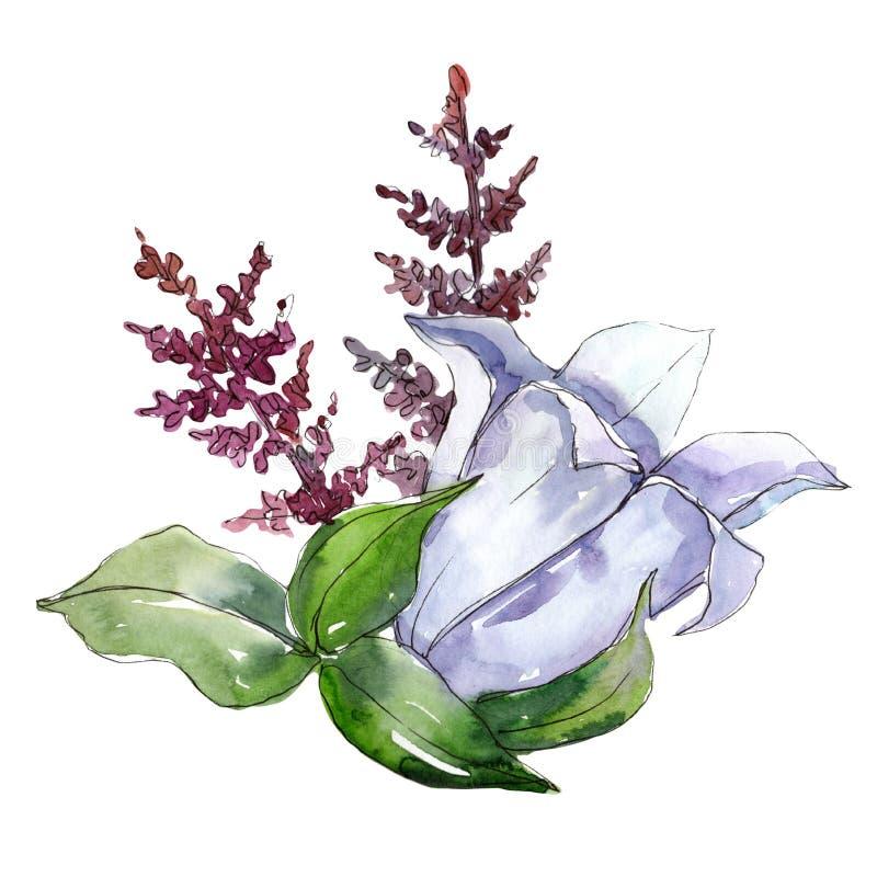 niebieski bukiet Kwiecisty botaniczny kwiat Dziki wiosna liścia wildflower odizolowywający ilustracji