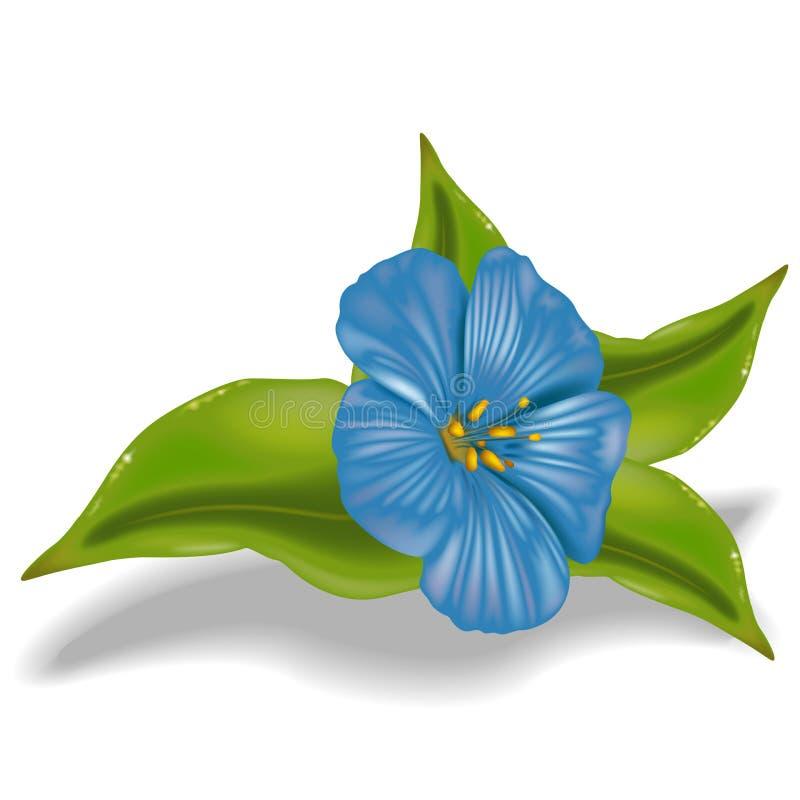 niebieski kwiat ilustracji