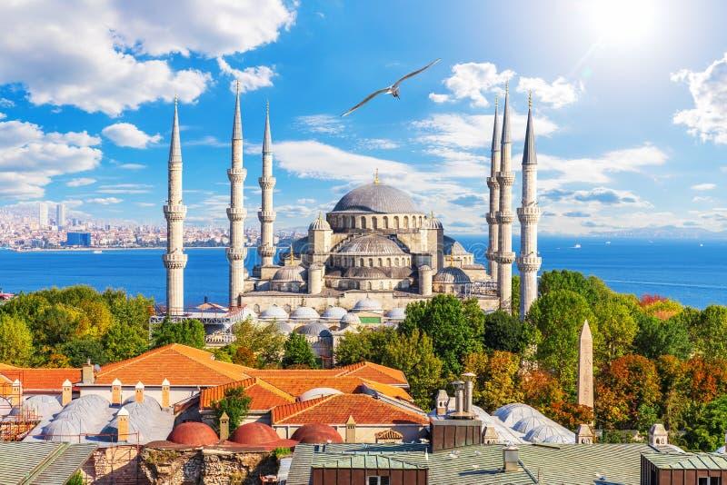 Niebieski Meczet lub Meczet Sułtana Ahmeta, znane miejsce wizyty w Stambule, Turcja fotografia royalty free
