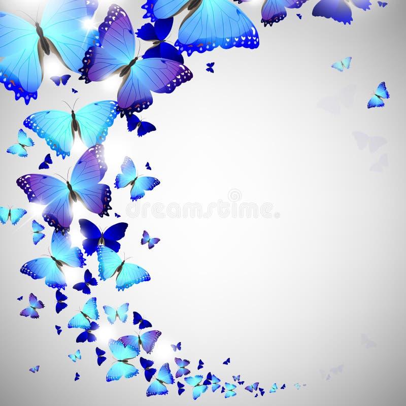 niebieski motyl ilustracja wektor