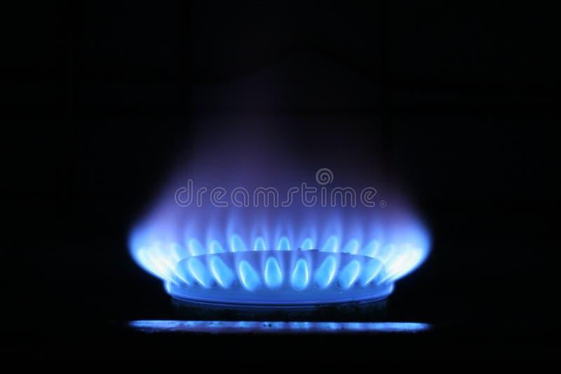 niebieski płomień gazu fotografia royalty free