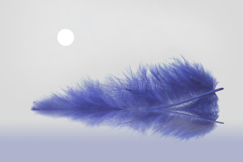 niebieski piórko moonlight s ilustracja wektor