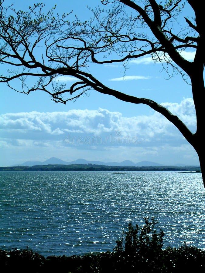 Download Niebieski seascape obraz stock. Obraz złożonej z drzewa - 28609