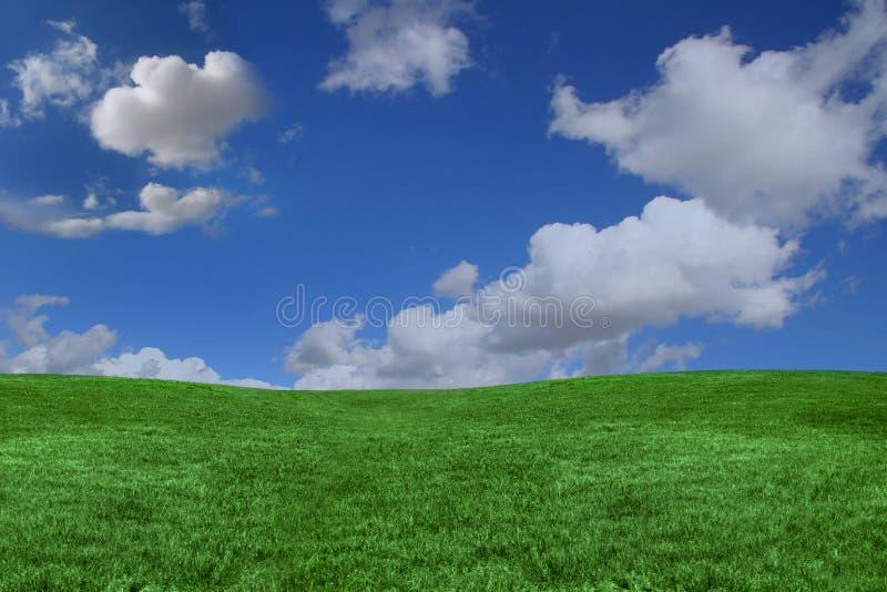 niebieski tła kopii trawy zielone niebo spac obrazy royalty free