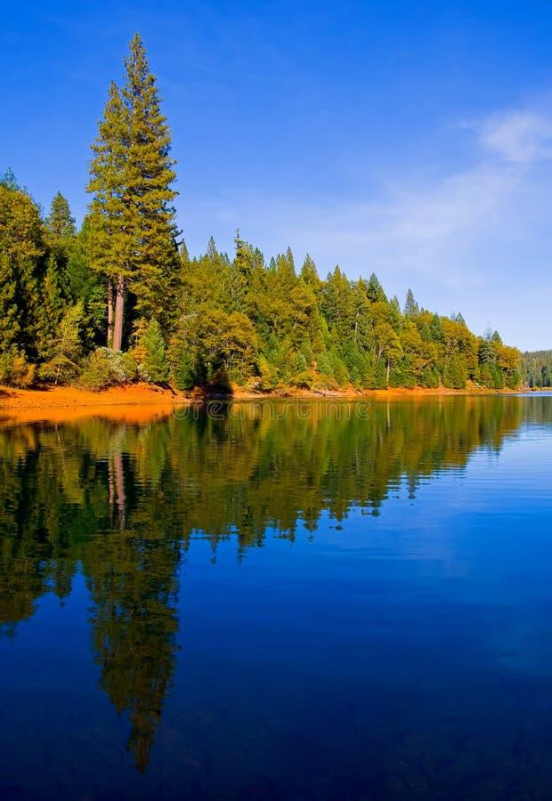 niebieski wyraźnie refleksji nad jeziorem zdjęcia royalty free