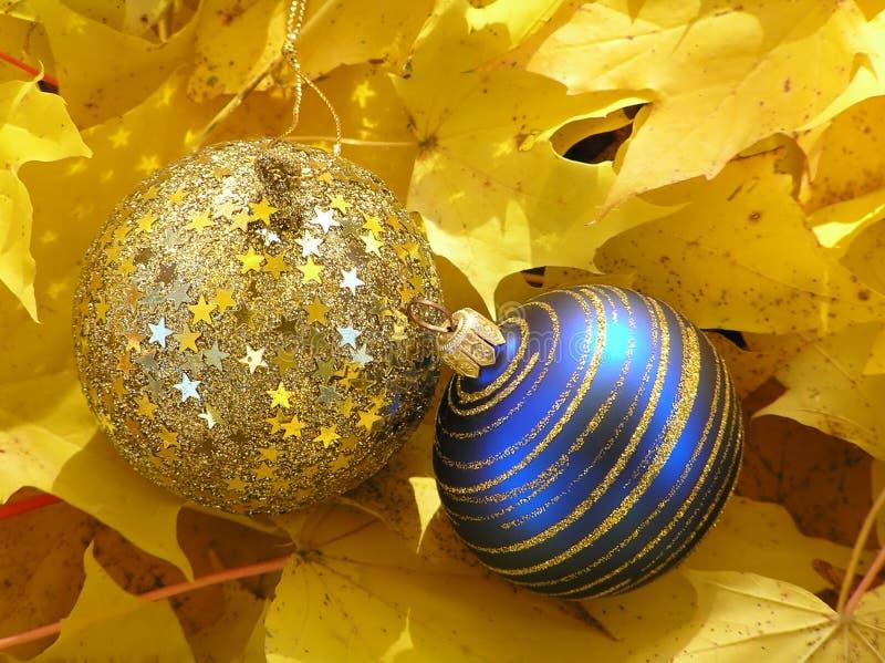 niebieskie, święta liści złoty klon zaczyna kwitnie zdjęcie royalty free