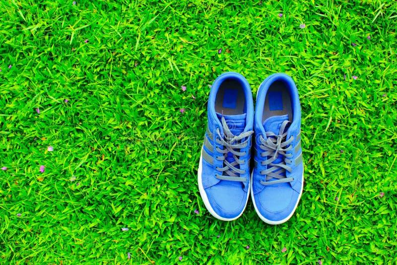 niebieskie buty obrazy royalty free