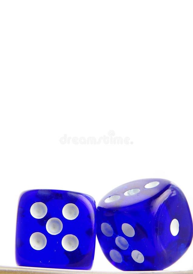 niebieskie die zdjęcie royalty free