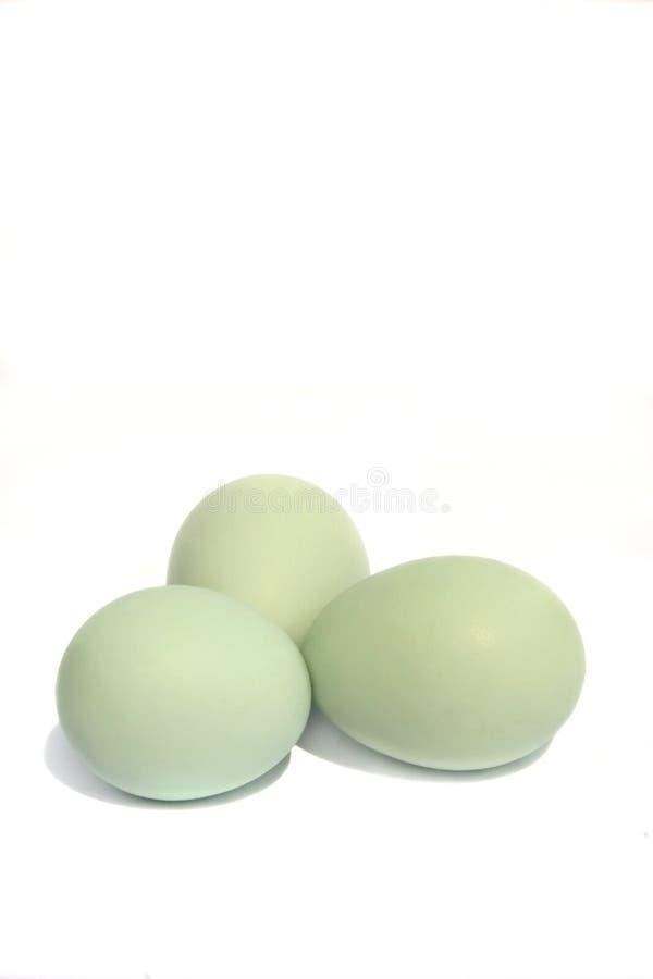 niebieskie jajko green fotografia stock