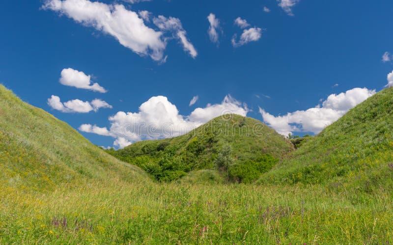 Niebieskie nieba, biel chmury i wzgórza przerastający z dzikimi trawami, fotografia royalty free