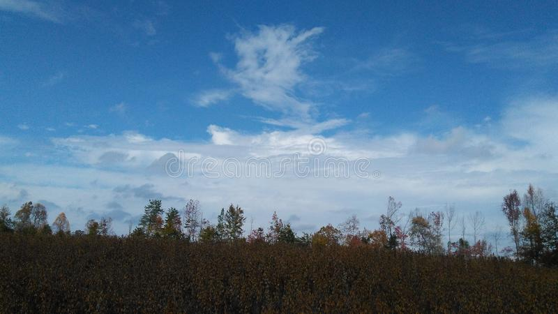 Niebieskie nieba w spadku zdjęcie royalty free