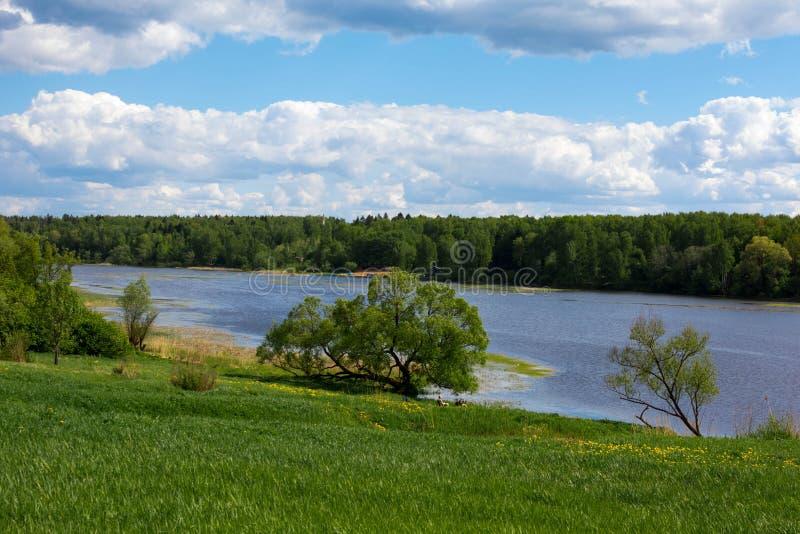 niebieskie niebo białe chmury Las na bankach rzeka obrazy stock
